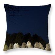 Bradford Pear Trees, Tennessee, Usa Throw Pillow