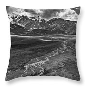 Braided River Throw Pillow