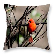 Brambles Throw Pillow