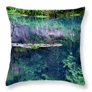 Branch And Reflections At Alley Spring State Park Throw Pillow