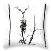 Branch Of Dried Out Flowers. Throw Pillow
