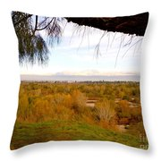 Branch Over River Bed Throw Pillow