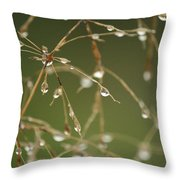 Branches Of Dew Throw Pillow