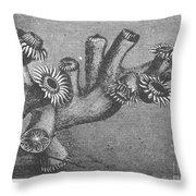 Branching Coral Throw Pillow