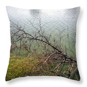 Branchs Over The Waters Edge 2001 Throw Pillow