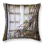 Branchy Window Throw Pillow