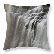 Brandywine Falls II Throw Pillow