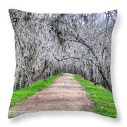 Brazos Bend Pass Throw Pillow
