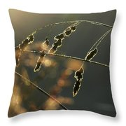 Break Of Dawn Throw Pillow