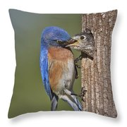 Breakfast Is Now Being Served. Throw Pillow by Susan Candelario