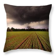 Breaking Loose Throw Pillow