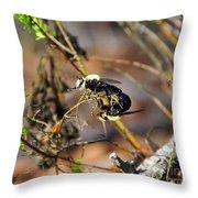 Breeding Bees Throw Pillow