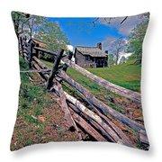 Breiniger Cabin Throw Pillow