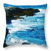 Brenton Point State Park Newport Ri Throw Pillow