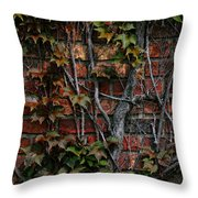 Brick And Ivy Throw Pillow