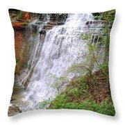 Brides Train Throw Pillow