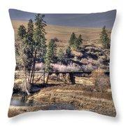 Bridge Over A Creek Throw Pillow