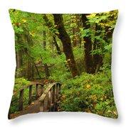 Bridge To A Fairytale Throw Pillow