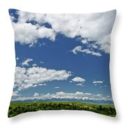 Bridger Mountain View Throw Pillow