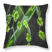 Bright Baby Leaves  Throw Pillow