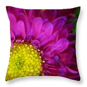 'bright Beauty' Throw Pillow by Tanya Jacobson-Smith