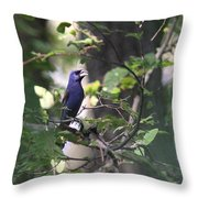 Bright Blue Throw Pillow