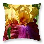 Bright Iris Throw Pillow