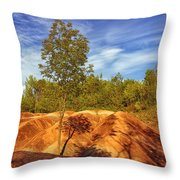 Bright Light On The Badlands Throw Pillow
