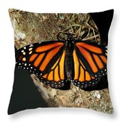 Bright Orange Monarch Butterfly Throw Pillow