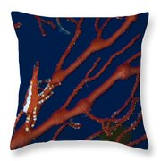 Bright Red Crab On Fan Coral, Papua New Throw Pillow