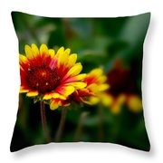 Brighten Up Your Day Throw Pillow