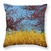 Brightly Comes The Spring Throw Pillow