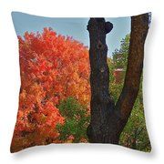 Brillant Throw Pillow