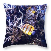 Brilliant Fish Aquarium Throw Pillow