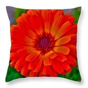 Brilliant Orange No. 2 Throw Pillow
