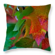 Brilliant Red Maple Leaves Throw Pillow