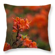 Brilliantly Rouge Throw Pillow