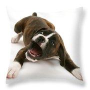 Brindle Boxer Pup Throw Pillow