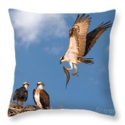 Bringing Breakfast Home Throw Pillow