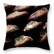 Bristle Pine Cone Throw Pillow