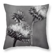 Bristle Thistle In Black And White Throw Pillow