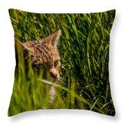 British Wild Cat Throw Pillow