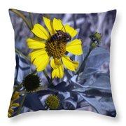 Brittlebush Bee Throw Pillow