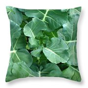 Broccoli Floret Forming Throw Pillow
