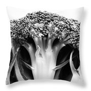 Broccoli On White Background Throw Pillow by Gaspar Avila