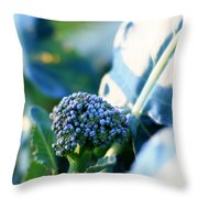 Broccoli Sprout Throw Pillow
