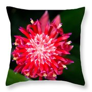 Bromeliad Bloom Throw Pillow by Rich Franco