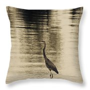 Bronze Lake Throw Pillow