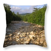 Brook 1 Throw Pillow