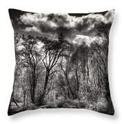 Brook Lake In The West Hylebos Wetlands Throw Pillow